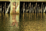 Naked Photographs Prints - Nude Reflection Print by Harry Spitz