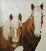 Horse Portrait Pyrography - Nudge and Roger by Cate McCauley