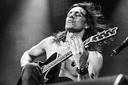 Live Music Prints - Nuno Bettencourt live 2012 Print by Lidia Sharapova