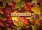 Forgive Prints - NURTURE-Autumn Print by  Onyonet  Photo Studios