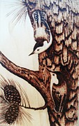 States Pyrography Posters - Nuthatch Heaven Poster by Susan Rice
