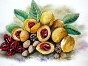 Tropical Pastels - NUTMEG   fruit to  spice  by Karin Best