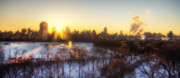 Central Park Digital Art Prints - NY Winter panaroma Print by Ariane Moshayedi