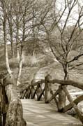 Robert Lacy - Nyborg Footbridge