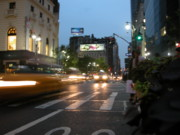 Crosswalk Photos - NYC Alive by Matthew Soult