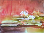 Lotus Paintings - Nympheas by Robert Hooper