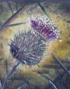 Scottish Art Originals - O Flower of Scotland by Jacqui Hawk