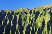 Crevice Prints - Oahu Koolau Mountain Print by Carl Shaneff - Printscapes