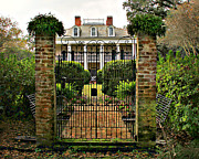 Oak Alley Plantation Photo Prints - Oak Alley Gate Print by Perry Webster