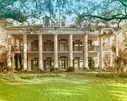 Oak Alley Plantation Photo Prints - Oak Alley Plantation Print by Marcie Adams Eastmans Studio Photography