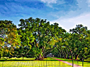 Oak Alley Plantation Print by Steve Harrington