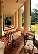 Oak Alley Plantation Photo Prints - Oak Alley Porch Print by Perry Webster