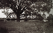 Bourke White Prints - Oak And Railroad Bridge Print by Doug  Duffey