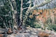Canyon Paintings - Oak Creek Canyon by Donald Maier