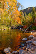 Oak Creek Prints - Oak Creek Canyon Fall Colors Print by Austin Troya