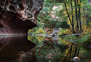 Yellow Leaves Framed Prints - Oak Creek Canyon Reflections Framed Print by Dave Dilli