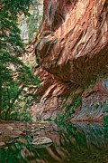 Oak Creek Canyon Prints - Oak Creek Canyon Walls Print by Dave Dilli
