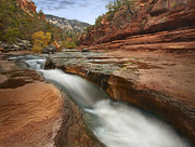 Slide Prints - Oak Creek In Slide Rock State Park Print by Tim Fitzharris