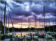 Docked Sailboats Posters - Oak Pt Harbor Poster by Brian Wallace