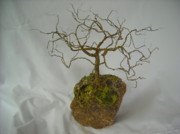 Wire Tree Sculpture Prints - Oak tree in Brass Print by Doris Lindsey