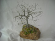 Wire Tree Sculpture Prints - Oak Tree in Galvanized Steel Wire Print by Doris Lindsey