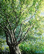 Pointillism Art - Oak Tree Pointillism by Dan Shefchik