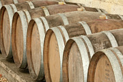 Winery Photography Photo Prints - Oak Wine Barrels In Castillion La Bataille, France Print by Steven Morris Photography