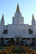 Latter-day-saints Posters - Oakland California Temple . The Church of Jesus Christ of Latter-Day Saints . 7D11324 Poster by Wingsdomain Art and Photography