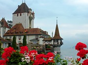 Geraniums Framed Prints - Oberhofen Castle with Flowers Framed Print by Marilyn Dunlap