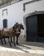 Hand Crafted Art - Obidos Horses II Portugal by John A Shiron