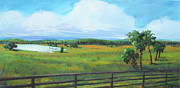 Live Oaks Originals - Ocala Downs by Michele Hollister - for Nancy Asbell