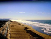 Scenic Drive Originals - Ocean Beach from Sutro Heights Park by Ac Pulizzano