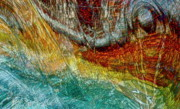 Gwyn Newcombe - Ocean Escape