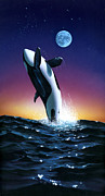 Whale Metal Prints - Ocean Leap Metal Print by MGL Studio - Chris Hiett