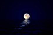 Sea Moon Full Moon Digital Art Posters - Ocean Moon Poster by Bill Cannon
