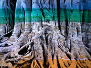 Tree Roots Prints - Ocean Sea Print by Skip Hunt