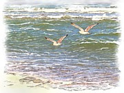 Flying Seagull Mixed Media Framed Prints - Ocean Seagulls Framed Print by Cindy Wright