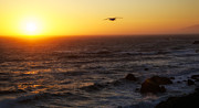 Ocean Sunset Print by Joe Urbz