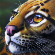 African Paintings - Ocelot 2 by Jurek Zamoyski