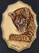 Pyrography Pyrography Framed Prints - Ocelot Framed Print by Clarence Butch Martin