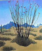 Bernard Goodman Metal Prints - Ocotillo Metal Print by Bernard Goodman