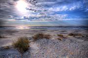 Sand Dunes Framed Prints - Ocracoke Winter Dunes II Framed Print by Dan Carmichael