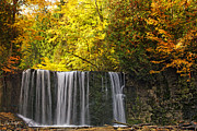 Autumn Photographs Posters - October at Hoggs Falls Poster by Phill  Doherty