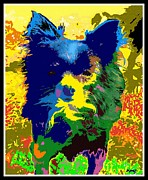 Manipulated Photography Framed Prints - Ode To Marion Rose - Chihuahua Framed Print by Glenn McCarthy Art and Photography