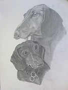 Dogs Drawings - Odi and Eli by Lora Marsh