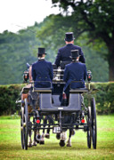 Carriage Horse Photos - Of More Gentile Times by Meirion Matthias