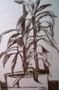 Indoor Still Life Drawings - Office Plant by Jamey Balester