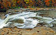 Yellow Trees Photos - Ohiopyle Falls by Steve Harrington