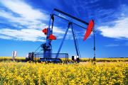Canola Field Prints - Oil Pumpjack And Canola Field, Arcola Print by Dave Reede