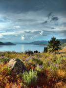 Okanagan Prints - Okanagan Lake in the Spring Print by Tara Turner